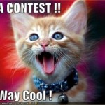 contest-4